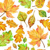 Modelo inconsútil de la caída del otoño de la acuarela Foto de archivo libre de regalías