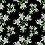 Modelo inconsútil de la flor con las flores blancas Fotos de archivo libres de regalías