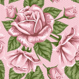 Modelo inconsútil de la flor retra - rosas Fotografía de archivo libre de regalías