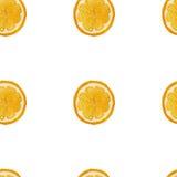 Modelo inconsútil de la fruta anaranjada de la acuarela, imagen del vector Fotos de archivo