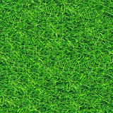 Modelo inconsútil de la hierba. Fotos de archivo