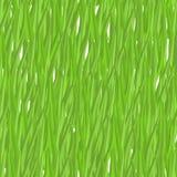 Modelo inconsútil de la hierba verde Verdor natural del fondo del vector Imagen de archivo libre de regalías