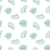 Modelo inconsútil de la hoja tropical de la selva de la palma de Monstera ilustración del vector