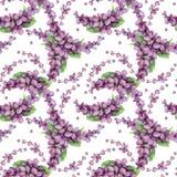 Modelo inconsútil de la lila violeta de la acuarela Imágenes de archivo libres de regalías