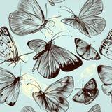 Modelo inconsútil de la mariposa con los insectos grabados en styl del vintage Imágenes de archivo libres de regalías