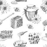 Modelo inconsútil de la miel del vector Fotografía de archivo libre de regalías