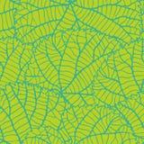 Modelo inconsútil de la naturaleza con las hojas verdes Fotos de archivo libres de regalías