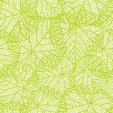 Modelo inconsútil de la naturaleza con las hojas verdes Fotos de archivo