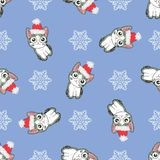 Modelo inconsútil de la Navidad con la imagen de pequeños gatitos lindos en el sombrero de Santa Claus Foto de archivo