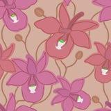 Modelo inconsútil de la orquídea Foto de archivo libre de regalías
