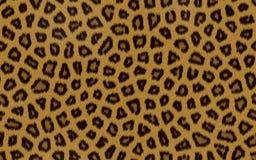 Modelo inconsútil de la piel del leopardo. stock de ilustración