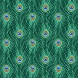 Modelo inconsútil de la pluma del pavo real Imagen de archivo libre de regalías