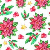 Modelo inconsútil de la poinsetia de la Navidad, flor de la acuarela, bayas del acebo, ilustración del vector