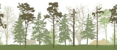 Modelo inconsútil de la silueta del ejemplo del vector del bosque de la primavera stock de ilustración