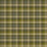 Modelo inconsútil de la tela escocesa de tartán Modelo de la tela La textura a cuadros para la tela de la ropa imprime, diseño we stock de ilustración