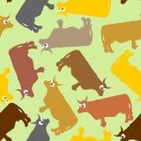 Modelo inconsútil de la vaca Vaca loca con los ojos grandes Backg del vector de los animales domésticos stock de ilustración