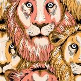Modelo inconsútil de las cabezas de los leones Ejemplo del vector en fondo negro Imagen de archivo