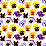 Modelo inconsútil de las flores de los pansyes imágenes de archivo libres de regalías