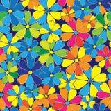 Modelo inconsútil de las flores multicoloras Fotos de archivo libres de regalías