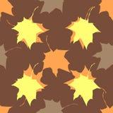 Modelo inconsútil de las hojas de arce del vector Fotografía de archivo