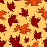Modelo inconsútil de las hojas de arce rojas del otoño Foto de archivo