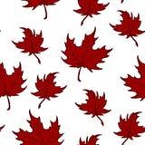 Modelo inconsútil de las hojas de arce rojas del otoño Fotos de archivo