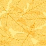 Modelo inconsútil de las hojas de otoño Imagen de archivo libre de regalías