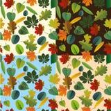 Modelo inconsútil de las hojas de otoño coloridas Vector Foto de archivo