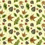 Modelo inconsútil de las hojas de otoño de la acuarela El roble pintado a mano, arce, caída del álamo temblón deja el ornamento a Imagen de archivo