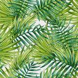 Modelo inconsútil de las hojas de palma tropicales de la acuarela Imagen de archivo