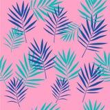 Modelo inconsútil de las hojas de palma tropicales Imagenes de archivo