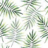 Modelo inconsútil de las hojas tropicales del coco ilustración del vector