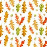 Modelo inconsútil de las hojas y de las bellotas del roble del otoño de la acuarela ilustración del vector