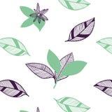 Modelo inconsútil de las hojas y de las flores de la fruta cítrica Sistema exhausto del ejemplo de la mano botánica del vector en libre illustration