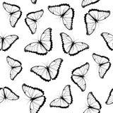 Modelo inconsútil de las mariposas Fotografía de archivo libre de regalías