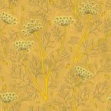 Modelo inconsútil de las plantas y de las semillas del hinojo libre illustration