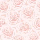 Modelo inconsútil de las rosas rosadas Fotografía de archivo