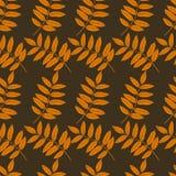 Modelo inconsútil de las siluetas de la hoja del otoño en fondo marrón ilustración del vector
