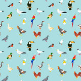Modelo inconsútil de los pájaros Fotos de archivo libres de regalías
