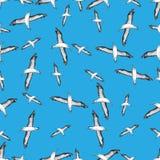 Modelo inconsútil de los pájaros de vuelo Foto de archivo libre de regalías