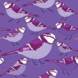 Modelo inconsútil de los pájaros violetas Ejemplo del vector en fondo del lila Fotografía de archivo libre de regalías