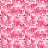 Modelo inconsútil de los pétalos rosados de la flor Fotografía de archivo