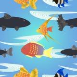 Modelo inconsútil de los pescados de la historieta Imagen de archivo libre de regalías