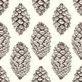 Modelo inconsútil de los pinecones realistas Ilustración a mano del vector libre illustration
