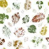 Modelo inconsútil de los sellos coloreados de las hojas en un fondo blanco Vector libre illustration