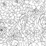 Modelo inconsútil de los succulents del vector Blanco y negro suculento o ilustración del vector