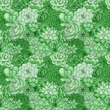 Modelo inconsútil de los succulents del vector Ornamento suculento stock de ilustración