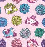 Modelo inconsútil de los Succulents y de los gatos lindos Fondo floral hermoso del vector Diseño superficial tropical de moda Fotografía de archivo libre de regalías