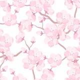 Modelo inconsútil de Sakura del japonés con las flores estilizadas Fondo hecho sin máscara que acorta Fácil de utilizar para el c Imagen de archivo