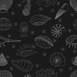 Modelo inconsútil de seashells Imagen de archivo